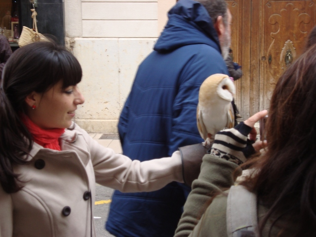 The prize of coolest animal goes to the lady with the owl.